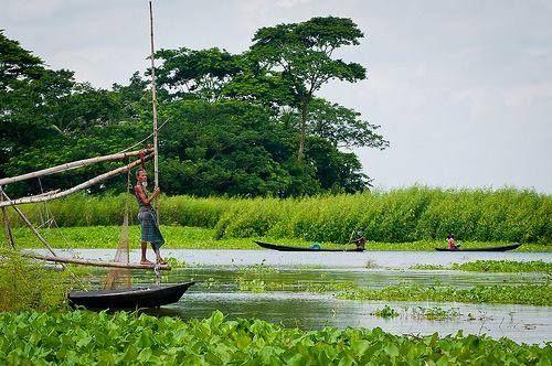 Local Guides Connect - Beautiful Rainy season in Bangladesh
