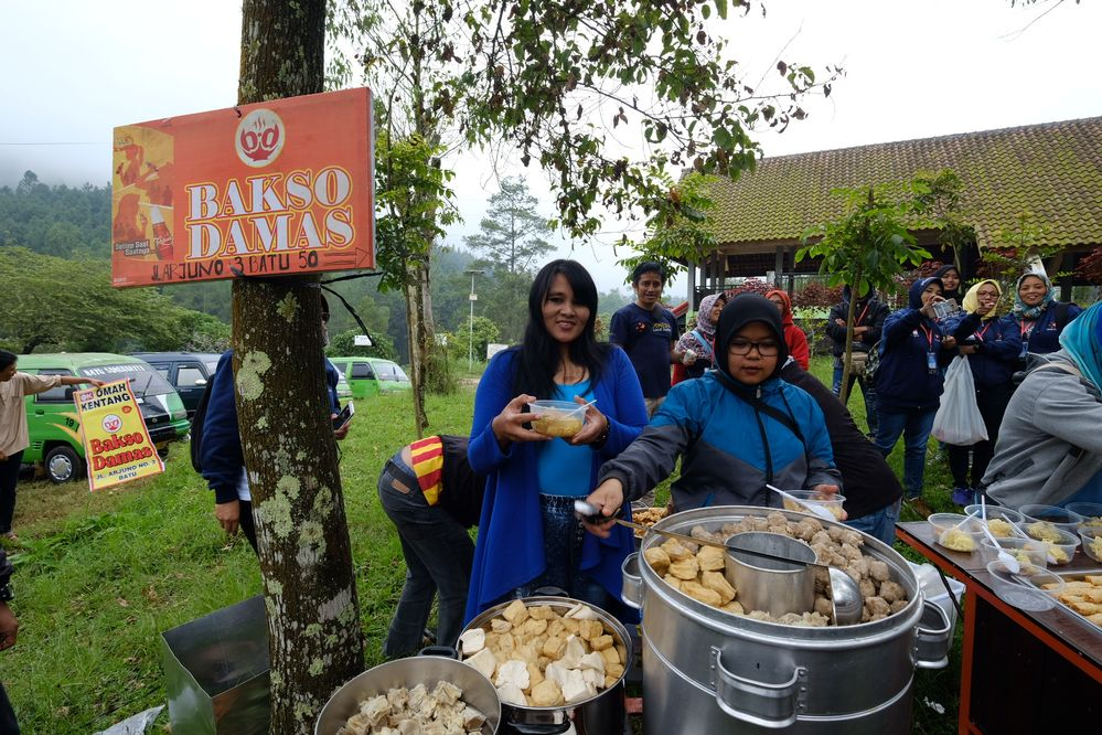 foodcrawl in the middle of foggy forest