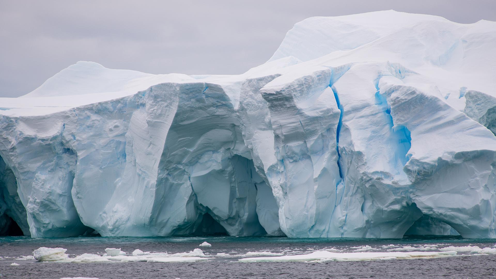 Фото материка антарктида