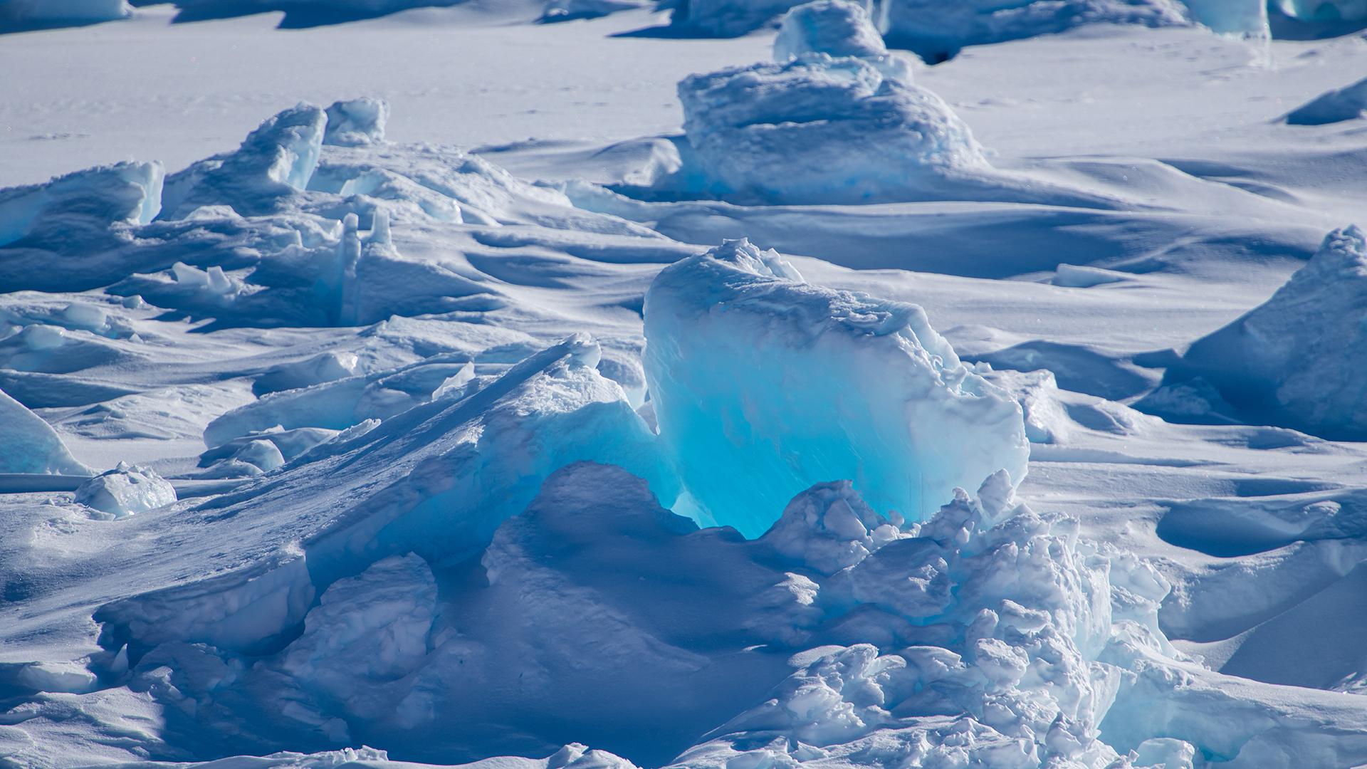 Антарктида картинки для презентации, сделать красивые открытки
