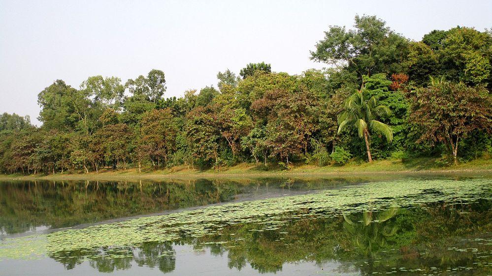 Ramsagar_National_Park.jpeg.jpg