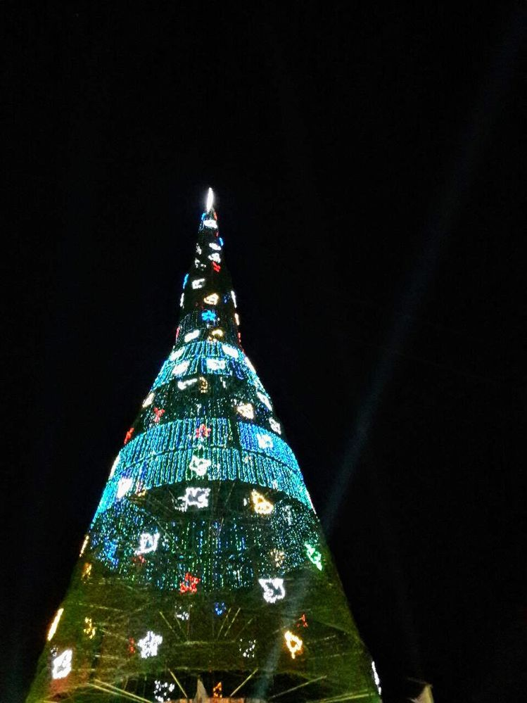 the worlds tallest artificial christmas tree - Worlds Tallest Christmas Tree