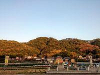 矢田丘陵 /YATA Hill