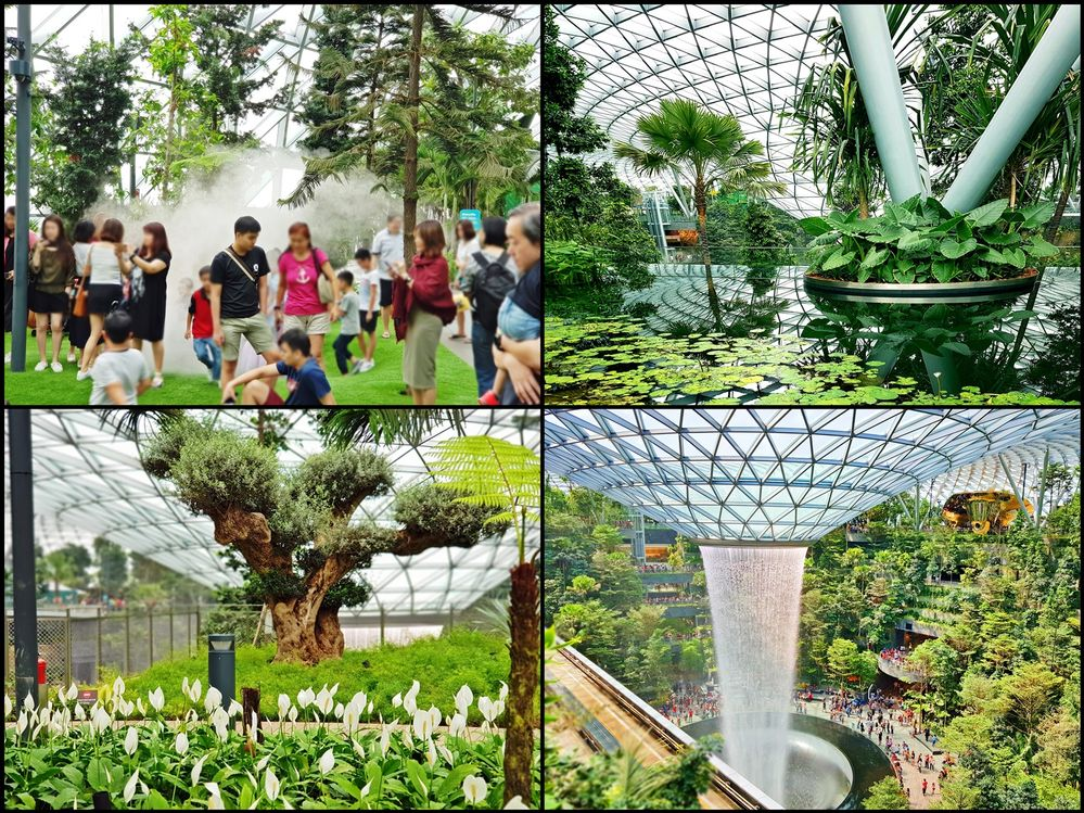 jewel changi relaxation.jpg