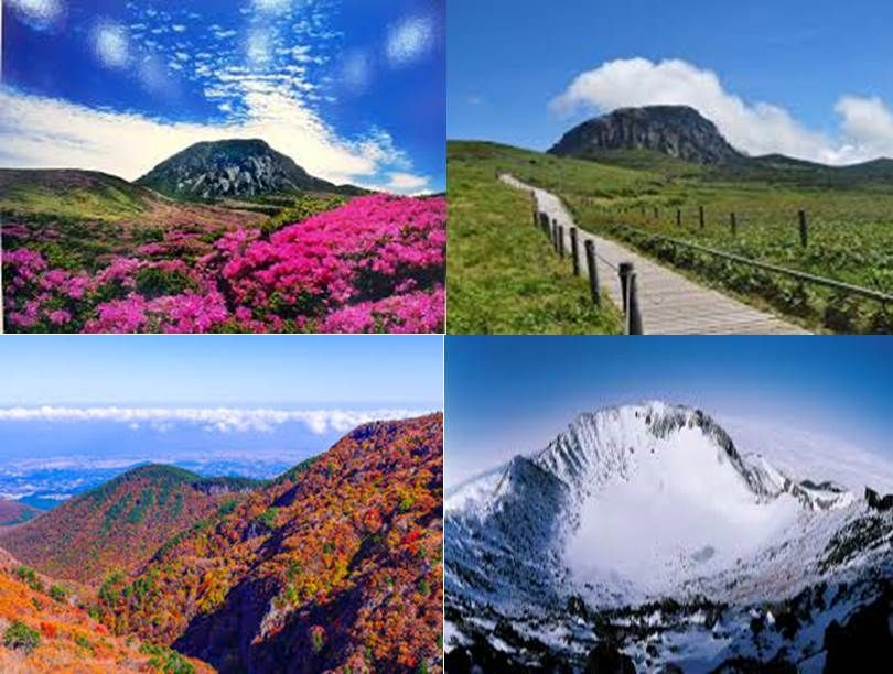 Local Guides Connect - The Road to the Sky of South Korea, Mt. Halla -  Local Guides Connect