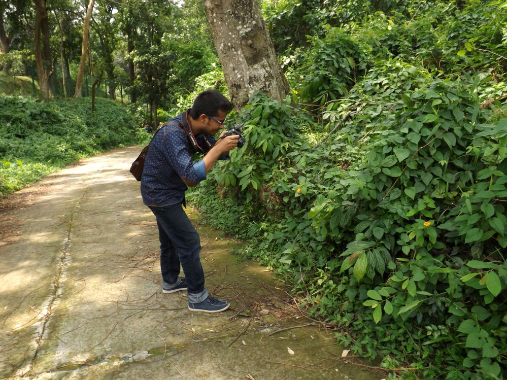 Photography near Rupban Mura