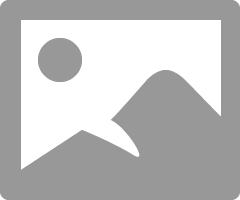 Local Guides Connect - Venice Theme in Villaggio Mall - Local Guides Connect