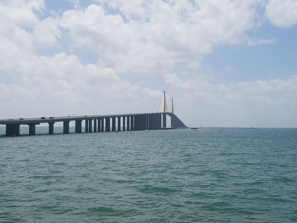 Local guides connect sunshine skyway bridge state park for Skyway bridge fishing